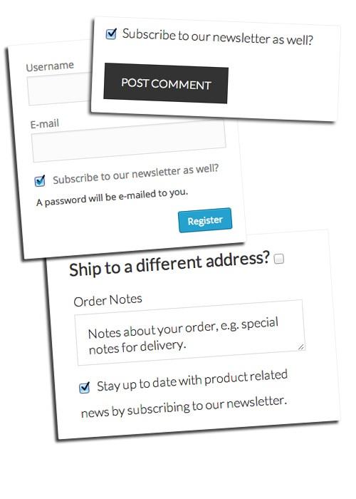 Hướng dẫn tích hợp MailChimp for WP vào website
