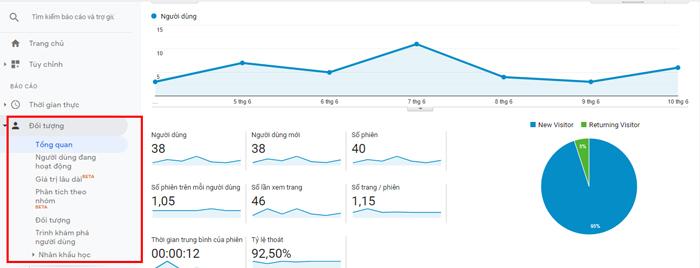 Báo cáo đối tượng google analytics